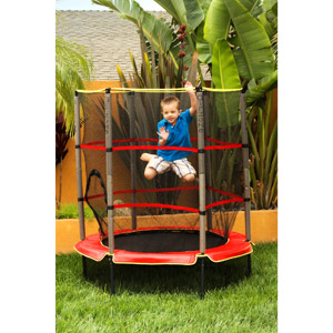 Mini Trampoline with enclosure